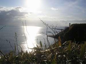 虎杖浜温泉 ホテルいずみ / 【前浜水揚海づくし物語/お食事処】<毛蟹半身&海の幸を大漁飾盛り♪>