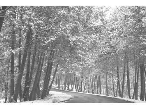 銀座グランドホテル ◆冬得◆冬のご旅行に!ちょっぴり嬉しい選べる特典付き /朝食付き