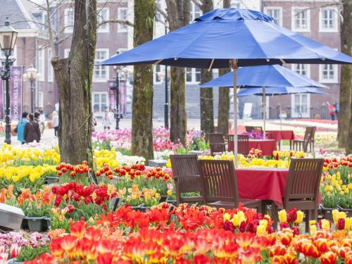 ホテルアムステルダム / DP【春満開♪】100万本のチューリップ祭満喫プラン(Lucky7・朝食・パスポート)