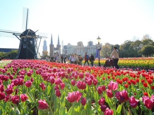 ホテルヨーロッパ / DP【春の訪れを感じる♪】100万本のチューリップ祭満喫プラン(Lucky7・朝食・パスポート)