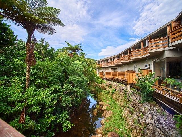 西表島ジャングルホテル パイヌマヤ / 西表島の秘境で過ごす癒しのステイ【朝食付】