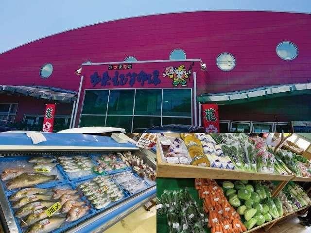 吹上浜フィールドホテル(Fukiagehama Field Hotel) / ≪ワンちゃんOK≫地元食材を楽しむ!■夕食持ち込みプラン■(朝食付)