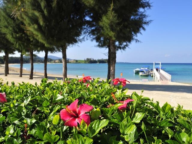 KARIYUSHI LCH. RESORT on The Beach / 【開業記念プラン♪】リゾートを手軽に満喫!LCH RESORT Stay◆グラスボート1回無料◆素泊り