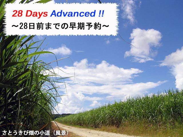 シェラトン沖縄サンマリーナリゾート 【Early Save】 28日前までの早期割(食事なし)