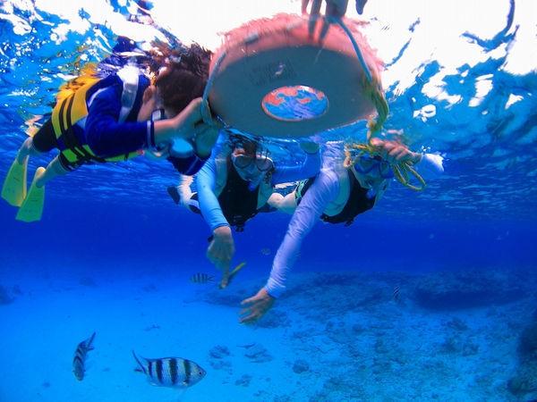 ケラマビーチホテル / 喧騒から離れ、雄大な自然の中でリフレッシュ!ケラマビーチホテルスタンダードプラン