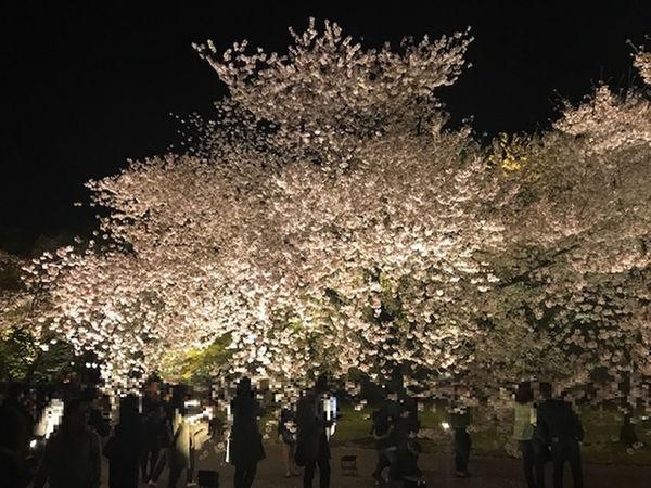 ホテルグラッドワン京都七条 / 【早割り14】
