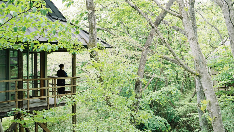温泉山荘だいこんの花 / 【基本プラン】1泊2食付きオールインクルーシブ