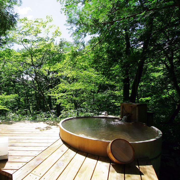 温泉山荘だいこんの花 月の下に眠る 「青い月」